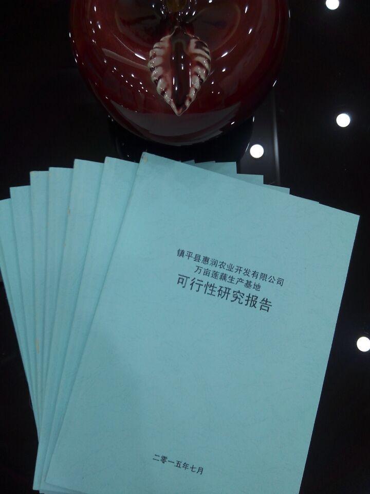 天津项目可行性研究报告 专业撰写可行性研究报告