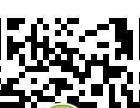 清清裤-粉粉裤-全国免费招代理加盟
