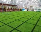 深圳仿真草坪植物墙花草绿植装饰工厂直销环保低碳上门安装
