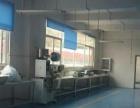 工业区食品、药品标准 厂房