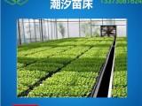 漯河花卉移动苗床大概规格是多少,承重量