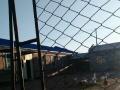 呼兰区出租厂房,养殖场