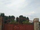 齐村 土地 2000平米 可用于养殖,放物,建厂