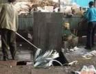青岛废纸回收