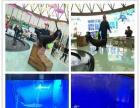 巢湖演出表演马戏团海狮海豹萌宠全套节目出租巡演