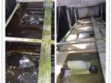 粤新粤新专业销售冷却水水质控制,中国中央空调水处理领先品牌