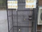 160猫笼子