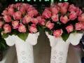 【鳌江镇鲜花店】99朵玫瑰 开业花篮 发财树 罗马柱等