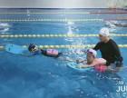 双洋环球广场室内恒温泳池星光100游泳俱乐部