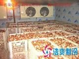 乐山水果保鲜库价格 乐山蔬菜保鲜库安装 乐山果蔬气调库