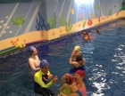 大连亲子游泳贝贝鲸亲子游泳 德国60年课程外教授课