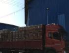 凉山州道路运输、国内货运办理