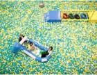 海洋球生产厂家-庆典海洋球乐园-海洋球积木乐园租赁