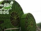 现代时园艺景观加盟 种植养殖 投资金额 1-5万元