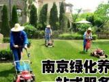 南京专业从事绿化养护服务、服务全南京