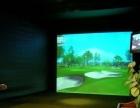 人造草果岭 迷你高尔夫 高尔夫个性化定制