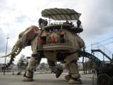 南京专业厂家制作生产机械大象 高度仿真大象租赁