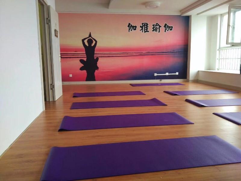 开发区伽雅瑜伽免费体验,低价购卡