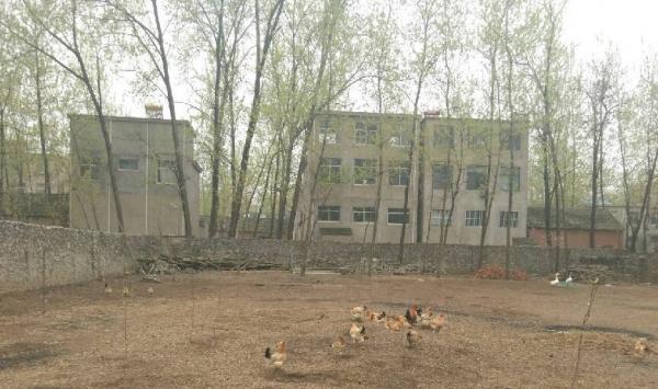 时村镇曹桥村巴家 厂房 3000平米
