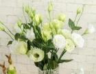 泉州零基础学花艺,插花创业班,开自己的花店