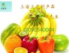 蔬菜水果鲜肉禽蛋粮油干杂等食材专业配送