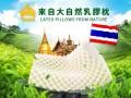 泰国本土乳胶枕品牌加盟TAIHI泰嗨泰国乳胶枕加盟代理