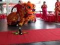 柳州市醒狮队