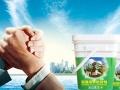 九江瓷砖粘结剂十大品牌招商加盟 保合瓷砖粘结剂诚邀代理商