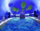鲸鱼岛海洋球大型蓝鲸出租租赁