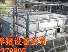 养猪设备厂家母猪产床出售联系电话