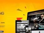海南三亚网站建设丨网络优化丨定制网站丨LOGO设计