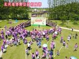 崇明拓展好去处上海长兴岛郊野公园团建拓展基地特色方案
