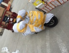 成都物流托运行李 电动车摩托车单车托运