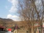 邹平白云山葫芦峪生态山庄 土地 600万平米