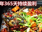 开一家三江烤全鱼加盟费用是多少