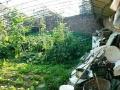 东光道口,小房带地温窖200平米