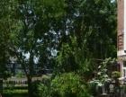 租房 月付 汾东路新世纪花园唯一一套 精装三居