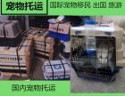 上海宠物托运鱼空运