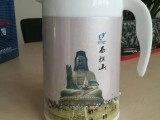 南海壶子同学品牌电热保温水壶