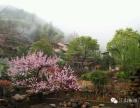 欢迎来江山市度假,品尝农家菜肴!