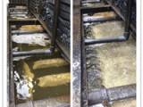 声誉好的冷凝器清洗供应商当属粤新水处理,冷却塔更换填料在哪家