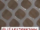 塑料平网实体厂家供应 塑料床垫网 pe材质塑料平网 隔离养殖网