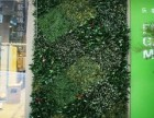 北京绿化仿真植物墙厂家