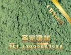 河南地坪 常年供应洛阳地区金刚砂耐磨地坪材料