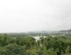 休闲种养 共30亩旱地山地出租 35分钟到广州市区