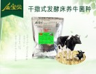 金宝贝夏季养牛防暑降温方法