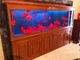 无锡定做鱼缸厂家生态鱼缸出售