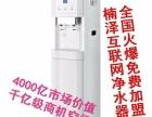 楠泽净饮水智能终端项目值得关注!免费供机啦.