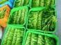 欣万粮油蔬菜配送找东莞欣万膳食|蔬菜批发配送中心