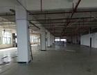 黄圃会展中心标准一楼1500平米厂房形象好招租